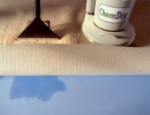 chem-dry carpet cleaning vs steam cleaners
