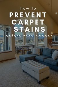 How to Prevent Carpet Stains Before They Happen