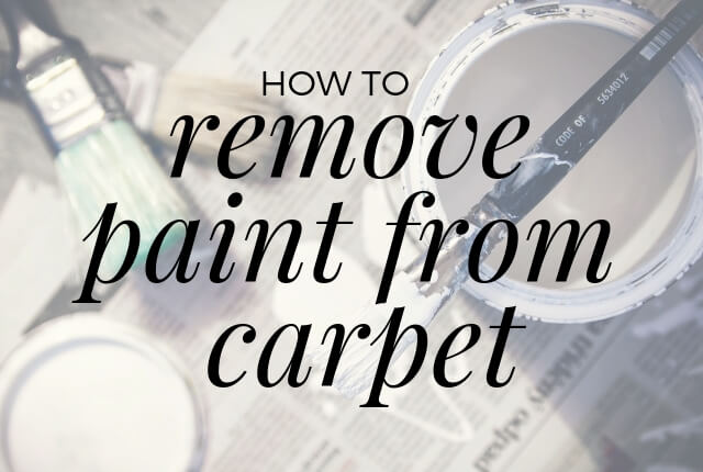 How To Remove Paint From Carpet Great American Chem Dry