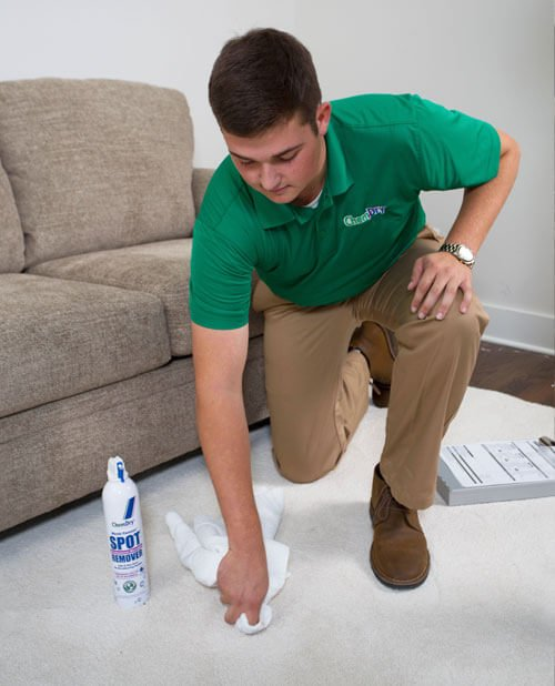 Professional Carpet Cleaner San Diego