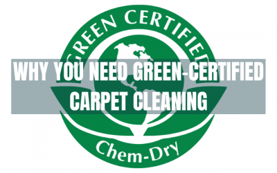 Why You Should Choose GREEN Carpet Cleaning in San Diego