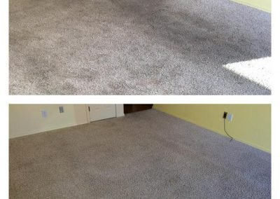 before and after a carpet cleaning
