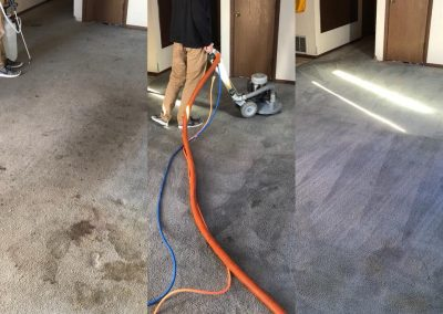 before, during, and after carpet chem-dry carpet cleaning in the san diego area